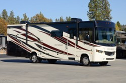 2014 Forest River Georgetown 329